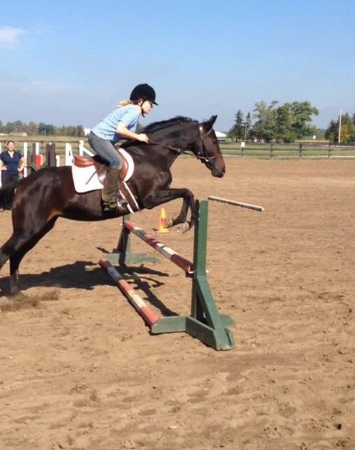 Image of a horse and rider going over a jump.