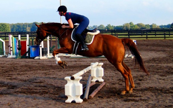 Starr and Horse Jumping